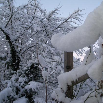an einem sehr kalten sehr strahlenden weißen Wintertag
