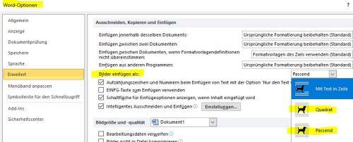 word_option_huendchen